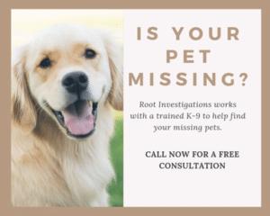 locate stolen pet investigations